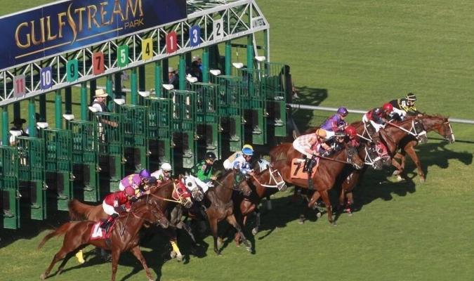 Las autoridades del óvalo floridano han ofrecido a los propietarios la opción de mantener sus ejem