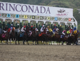 Arrancan selectivas para los potros de dos años en La Rinconada | Archivo BDA