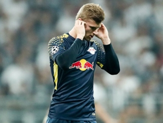 Werner no soporta ruidos fuertes/ Foto Cortesía