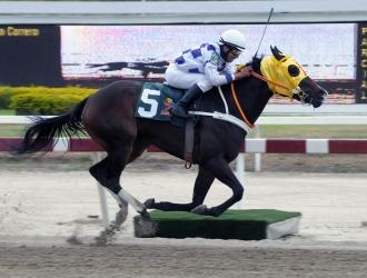 Correrá 1.500 metros   http://haraslaorlyana.com.ve