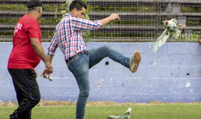 Gastón Alegari, gerente de Fénix, pateando una gallina / AP