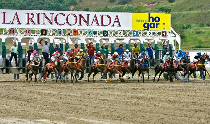 Tamarind Moon fue el gran ganador | Foto: Cortesía