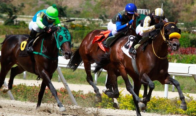 Resultados de las carreras de caballos en La Rinconada // Foto: Cortesía