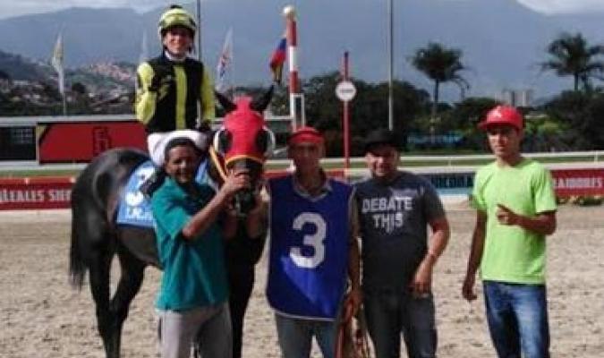 Carreras de caballos en Coche // Foto: Cortesía