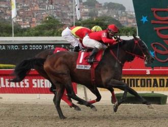 Gran Omero fue el campeón / Foto: Cortesía