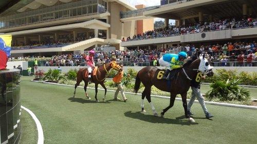 Resultados de las carreras / Foto: Cortesía