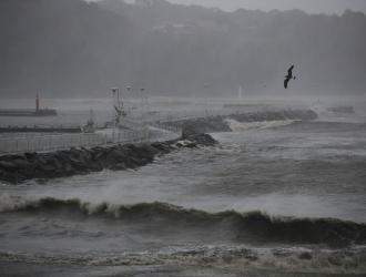 El tifón Hagibis obligó a suspender la jornada / Foto: AP