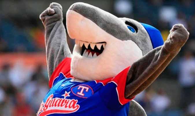 Tiburones lleva dos ganados y uno perdido/ Foto: Cortesía