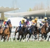 Este viernes el óvalo de Valencia fue el escenario de otra jornada de carreras / Foto: Cortesía