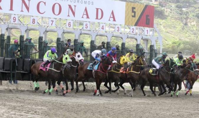 11 compromisos el domingo en La Rinconada / Foto: César Suárez