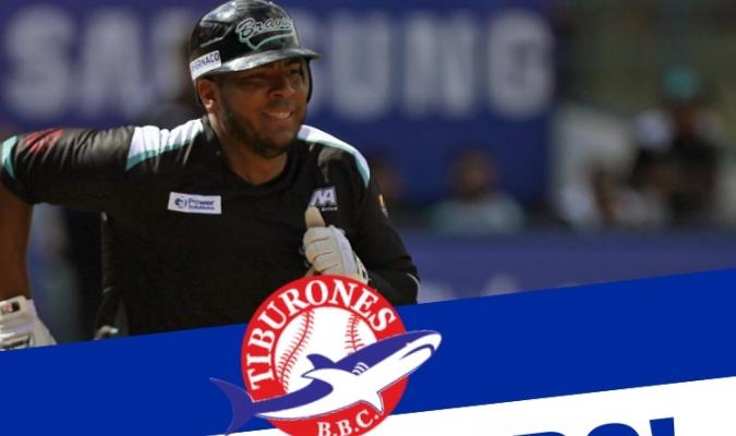 Jugará en el equipo de su estado natal| Prensa Tiburones BBC