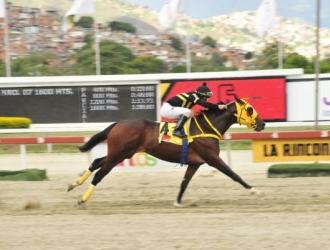 Por más triunfos / Cortesía: José Antonio Aray