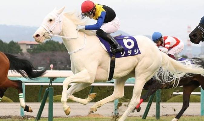 El trainer Naosuki Suagi irá por la Triada