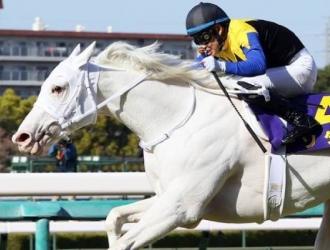 Sodashi por la Triple Corona japonesa / Foto: JRA