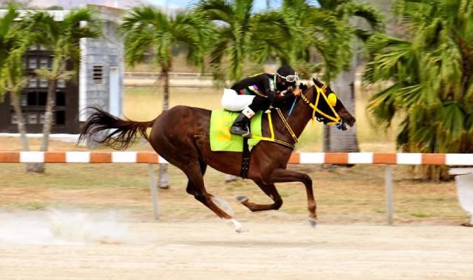 El entrenado por Luis Ibarra ganó por dos cuerpos de diferencia / Foto: @OficialHINAVA