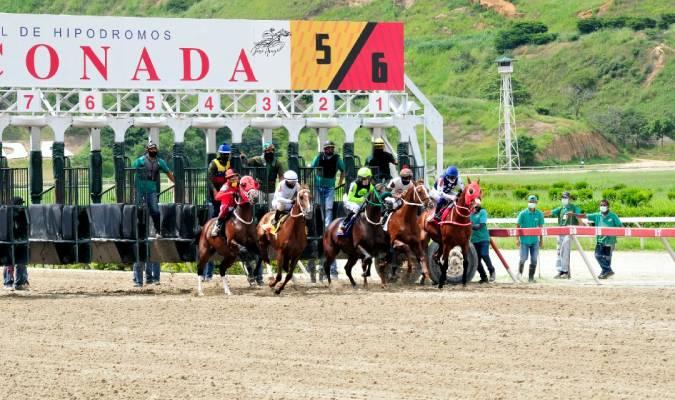 Rumbo a más premios  / Foto: José Aray