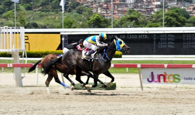 Rumbo a más triunfos / Foto: José Antonio Aray
