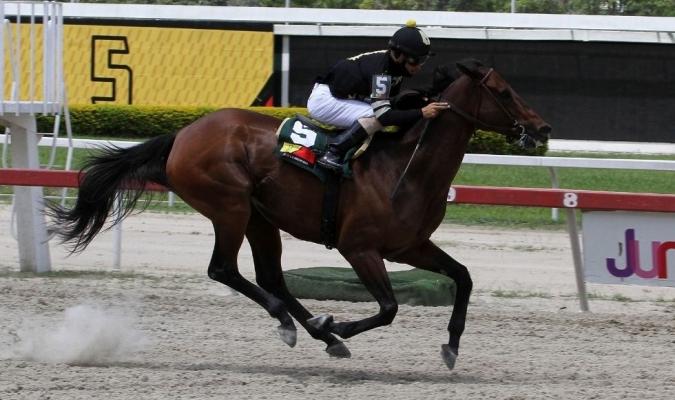 En el óvalo de Coche se inicia a las 12:50 de la tarde y finaliza a las 4:40 pm / foto cortesía