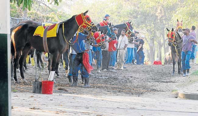 El gremio de caballerizos y traqueadores paralizaran sus actividades en el hipódromo La Rinconada/A